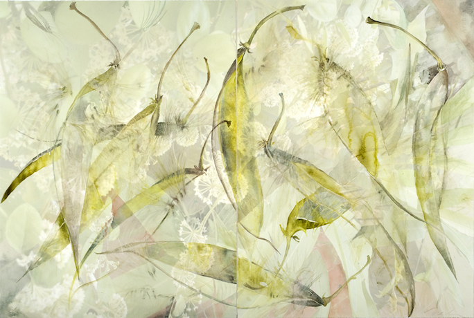 "Mixed Media Paintings 2011-2006 Stephanotis Split, 2011, Watercolor & Archival Ink Jet on Paper, 29"" x 43.5"" (two panels)"