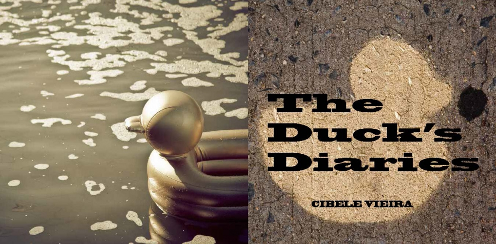 Cibele Vieira The Duck's Diaries ( book project)