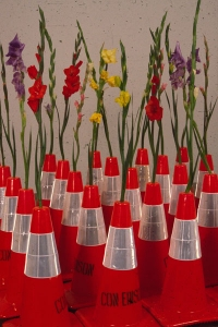 Cindy Tower Viewers as Creators Oraqnge traffic cones and Gladiolas