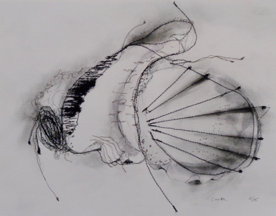 Clare Murray Adams Drawings ink and stitching on paper