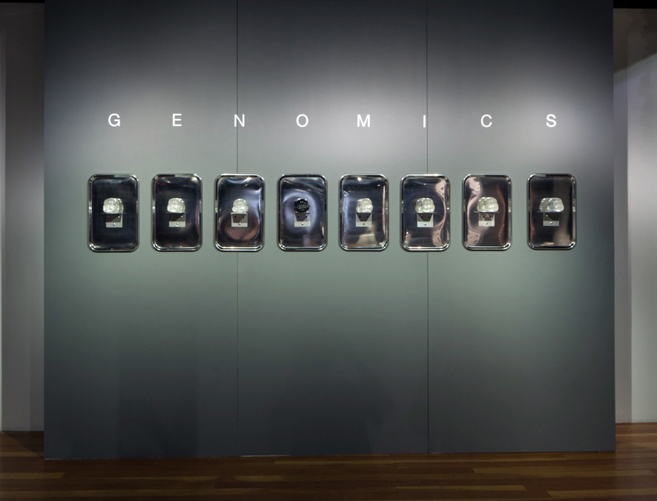 In The Beginning Was Black Series Genomics