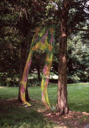 Marcia Cooper BETWEEN the Trees Mixed media with netting, string and translucent plastic shoes