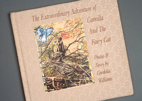 Cordelia Williams The Extraordinary Adventure of Camilla and the Fairy Cat Codex book, hard covered