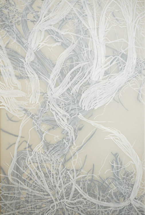 Cristina de Gennaro Sage Drawings Acrylic ink on mylar.