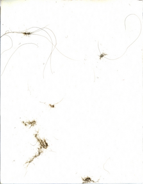 Cynthia Lin Drawings of Dust (2000-2004) silver on gesso on paper
