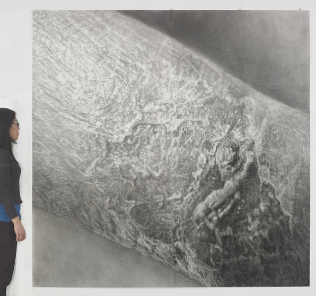 Cynthia Lin Drawings of Scars graphite and charcoal on paper