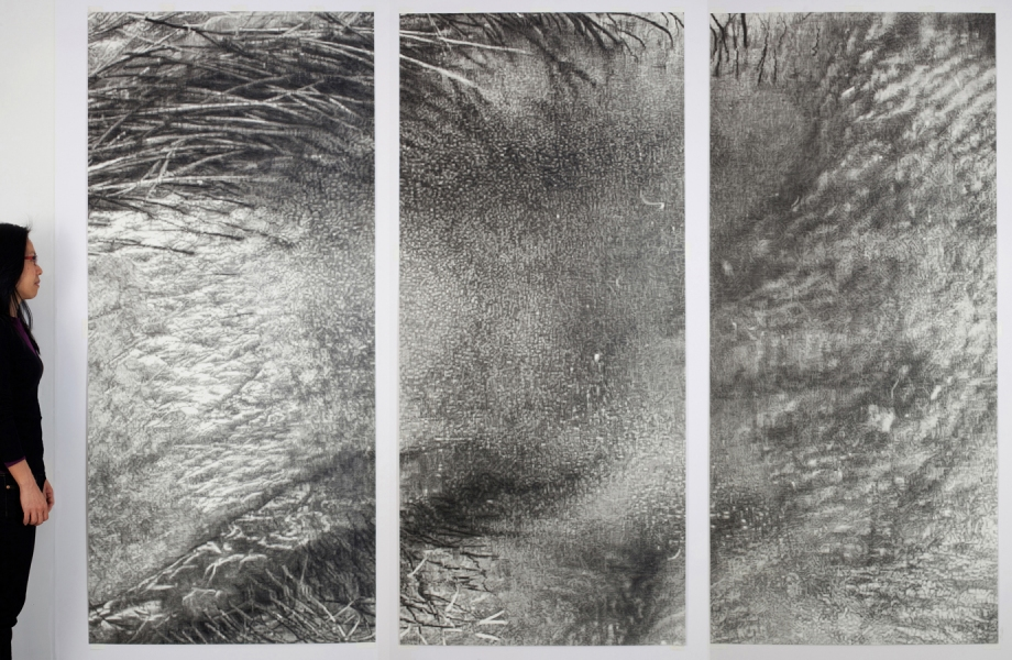 Cynthia Lin Monumental Drawings of Skin graphite and charcoal on paper