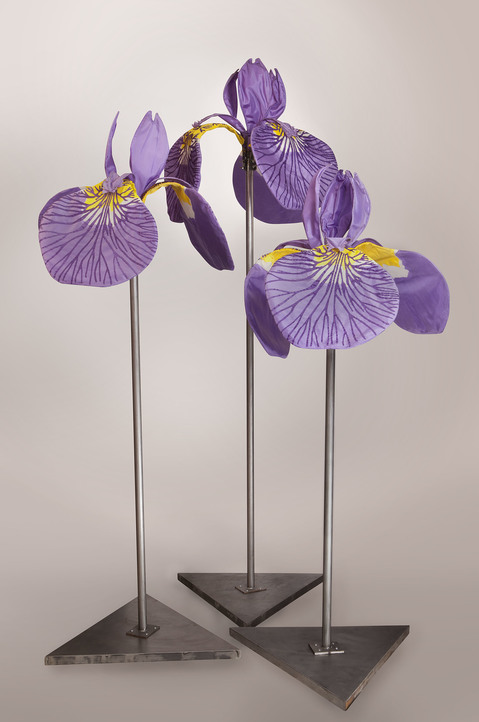 Daina Shobrys Siberian Irises Plastic banner fabric, pvc pipe frame, galvanized wire, adjustable hose clamps.