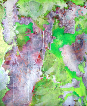 DANIEL ROSENBAUM Paintings 2011-2012 ink, acetate, paper, acrylic, canvas