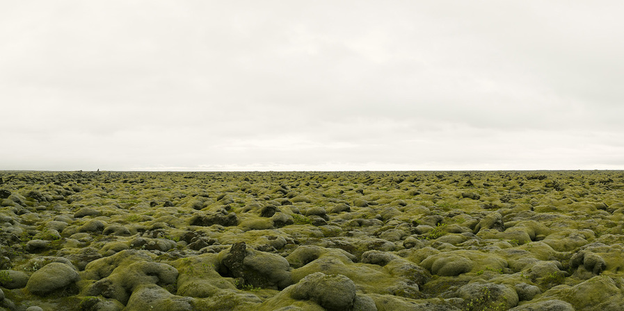 Moss Covered Lava Field, Iceland, 2008