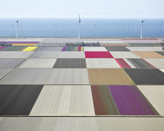 DAVID BURDENY Netherlands 2015-2016 (new)