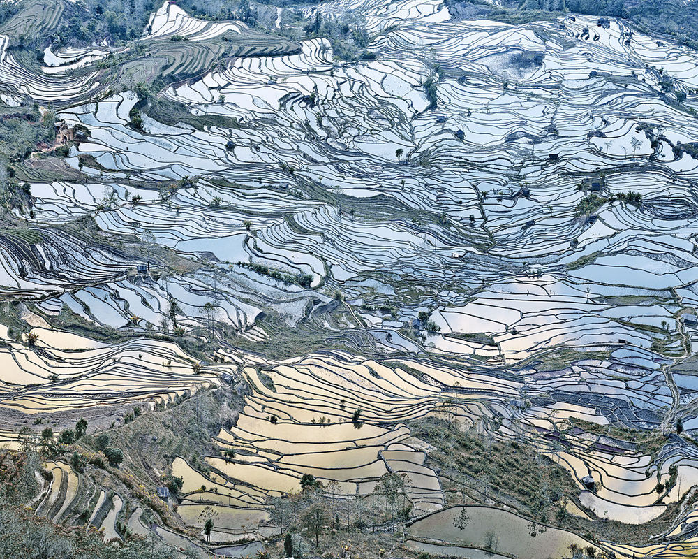 ASIA Rice Terraces, (Laohuzui I), Yunnan, China, 2013