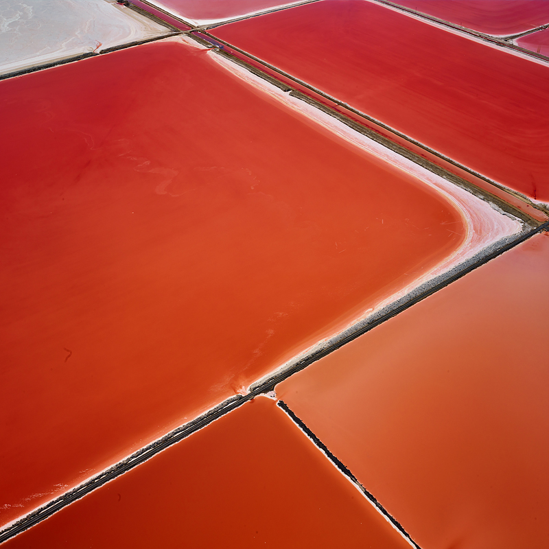 SALT:  Fields, Plottings and Extracts 2015-2016 Saltern Study 08, Great Salt Lake, UT, 2015