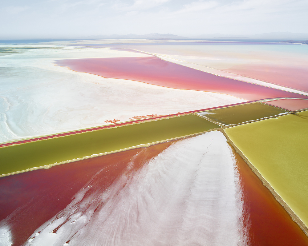 SALT:  Fields, Plottings and Extracts 2015-2016 Saltern Study 02, Great Salt Lake, UT, 2015