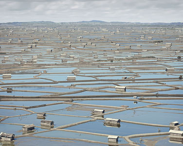 Fish Farms, Bima, Indonesia, 2014