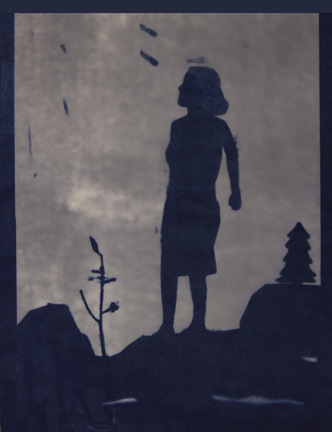 Cyanotypes Distant Thunder