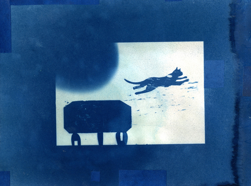 Cyanotypes Leap