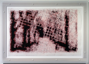 D A V I D  H A N N A H holzwege ink, silicone, on plastic layers, plexi, wood, fasteners, artist's frame