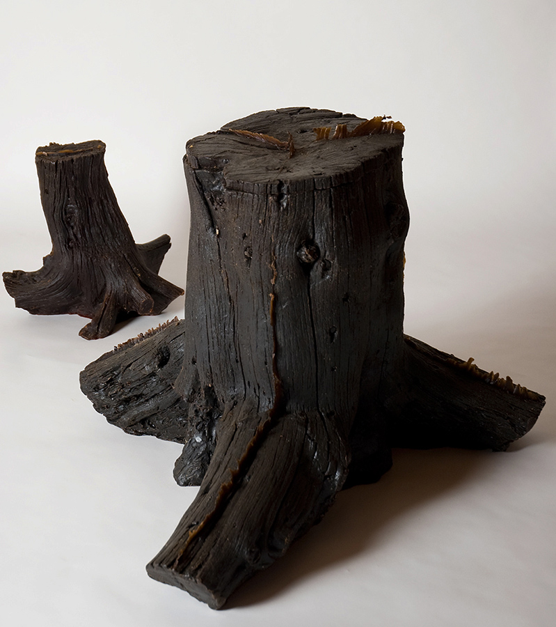 TREE STUMP TREES / SCULPTURE 2008 Wax.