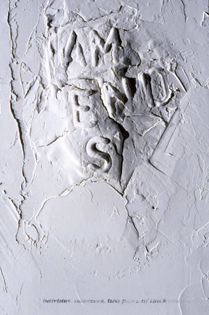 Deborah Davidson Selected Past Work  Plaster