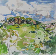 Deborah Sherman Landscapes Gouache on White board