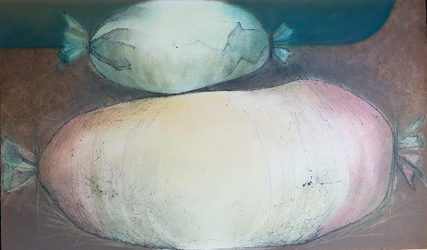 Debra Radke Pods / Pairs  Mono print with drypoint technique and pastel on Somerset paper