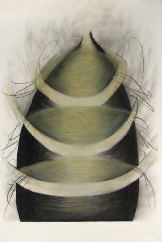 Debra Radke Vortex Phenomenon Charcoal & Pastel on Somerset paper