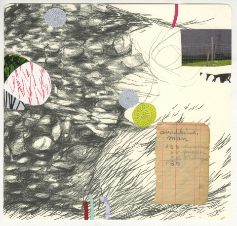 DIANA MARIE BEHL  Imaginary Story Graphite and collage on paper