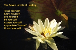 Diane Hardy Waller Seven Levels of Healing Meditation Cards photography