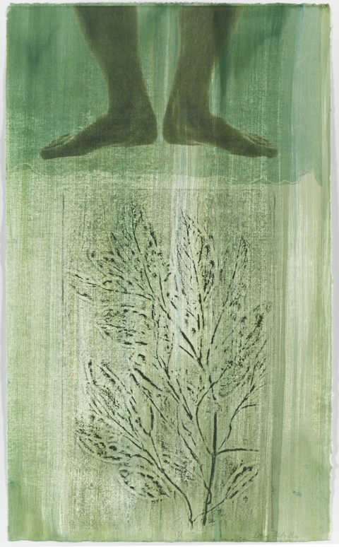 Creatura Botanica: Human and Plant Forms Conjoined collagraph on ultrachrome photo print on cotton