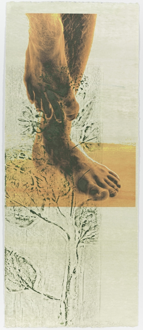 Creatura Botanica: Human and Plant Forms Conjoined Ultrachrome photo print & collagraph on 100% cotton rag