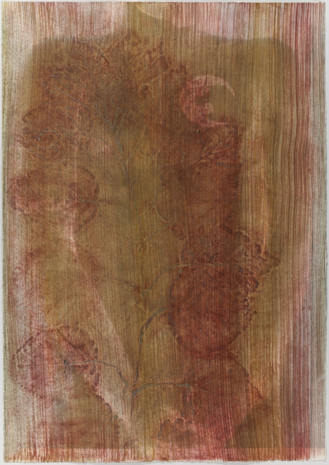 Creatura Botanica: Human and Plant Forms Conjoined collagraph on cotton ultrachrome photo print