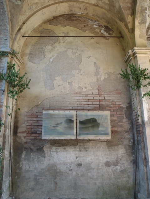Creatura Botanica: Human and Plant Forms Conjoined Dreaming under the arches