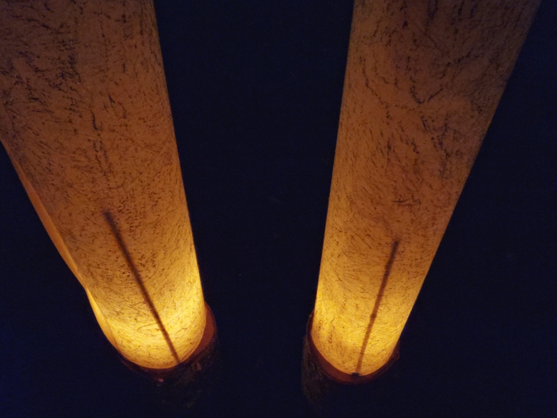 The Human Tracks Project votive goat columns mounted on birch stumps glowing at night