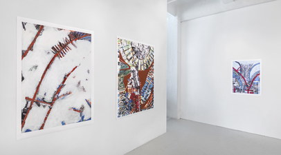 Donna Moran OPUS Project Space Installation February 2014 Images Archival Digital Prints with Paint