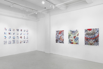Donna Moran OPUS Project Space Installation February 2014 Images Mixed, Archival Digital Prints with Paint and Pencil