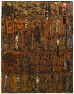 Dominick Anthony Takis Image Gallery 2.             MRI Collages: 2001 - 2004 Acrylic,Oil, Cut out Media, Organic Matter on and behind MRI Film
