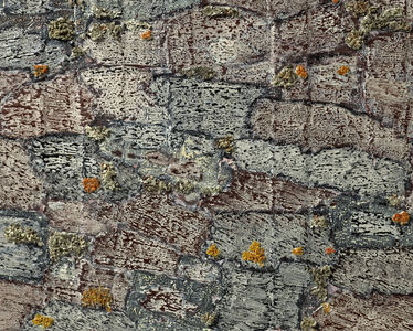 Dominick Anthony Takis  Image Gallery 3.   Iceland Landscape                       acrlic, tempera, lichen, mixed media in silicone caulking on canvas