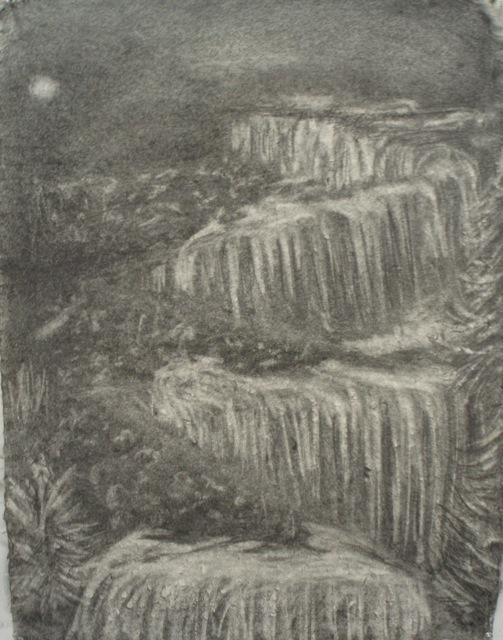Donna Powers Drawings graphite on Indian cotton rag paper