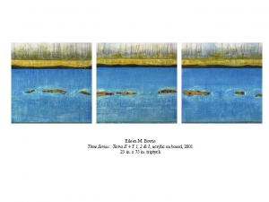 Eileen Bowie Time Series - Paintings Acrylic on Board