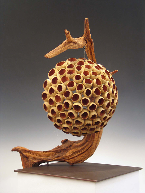 Elaine Lorenz Seed Pod Series Ceramic, oxide stains, wood, steel