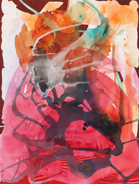 Grand Canyon/Wupatki Watercolor: 2013-4 Pink Griddle