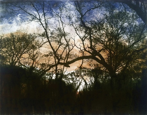Landscapes Paper Lithograph & Monotype / 11 X 14