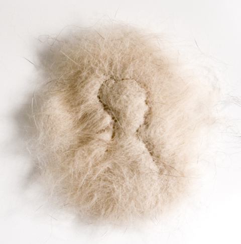 Elizabeth Duffy A Series of Minor Miracles Dog Hair embroidered with Human Hair