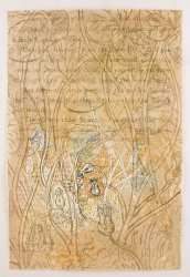 Ellen Kahn Botanical Works on Paper mixed media on paper