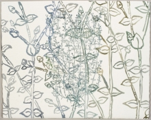 Ellen Kahn Botanical Works on Paper ink and watercolor on paper