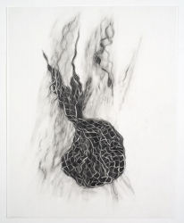 Ellen Kahn Mesh Works on Paper graphite on mylar