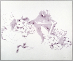 Ellen Kahn Shadow Works on Paper ink on mylar