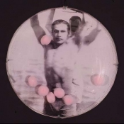 ERIC SHULTIS Objects photo on acetate, metal, domed glass, pink balls
