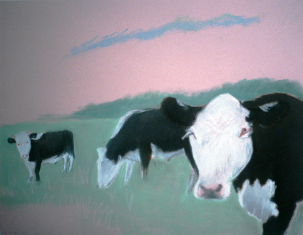 ANIMALS Three Cows